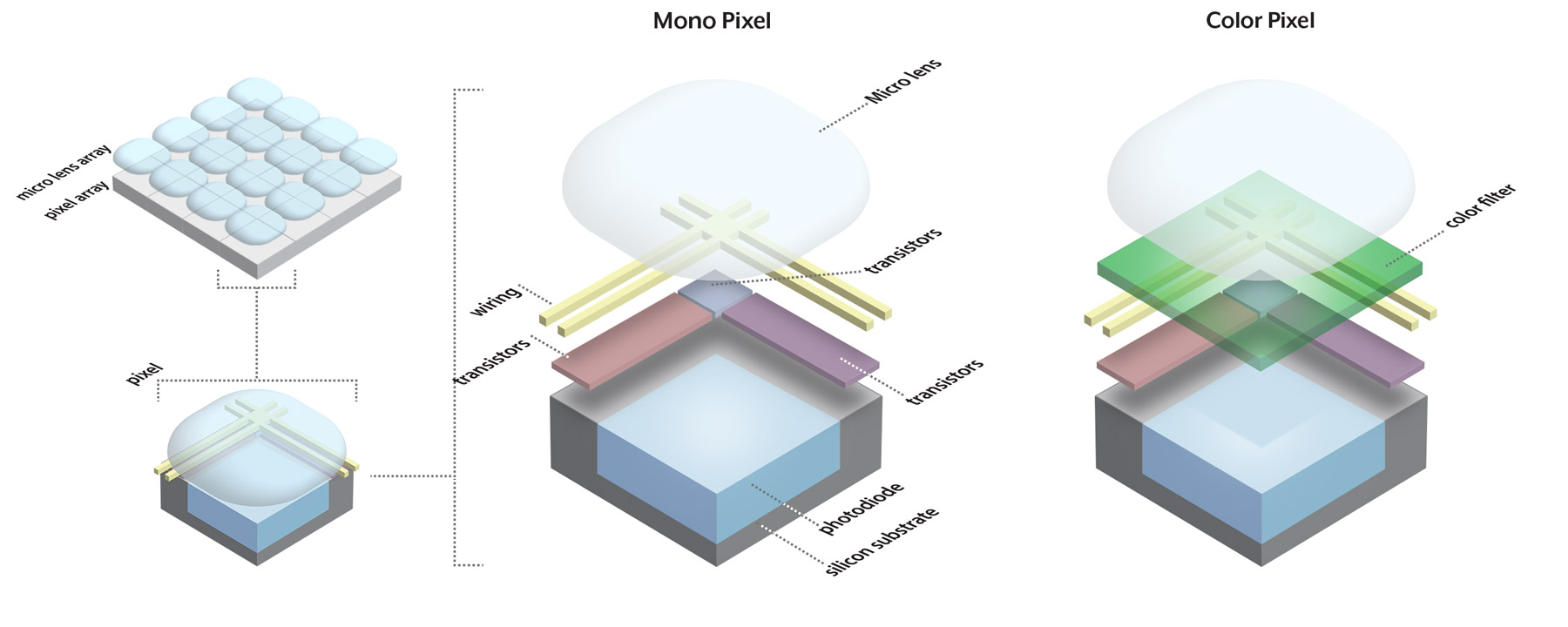 Introduction To Image Sensors Lucid Vision Labs Just How Do You Make A Color Sensor Mono Vs Pixel In
