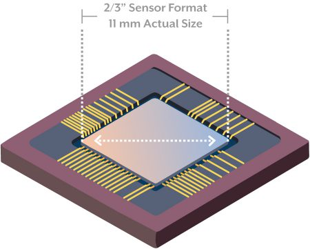 Actual sensor size