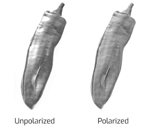 Polarization removes glare from shiny vegetables
