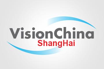 Vision China Logo