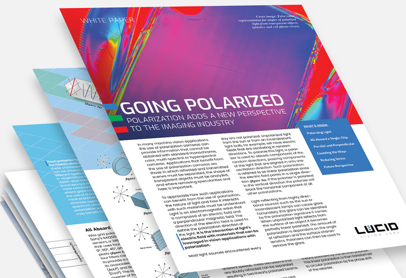 Polarization White Paper