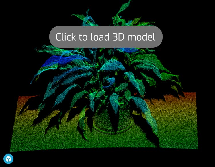 3D Point Cloud of Plant