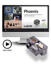 Phoenix camera video by LUCID